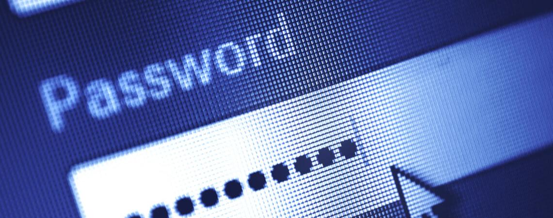 Passwort-Eingabefeld