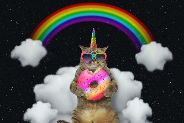 Einhorn-Katze mit Regenbogen