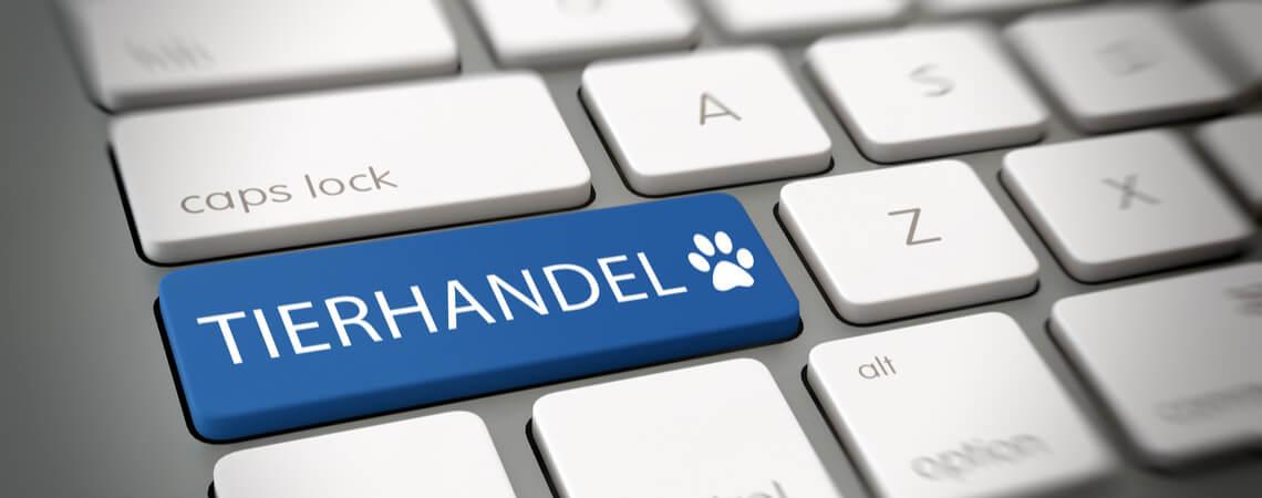 Tierhandel auf Tastatur