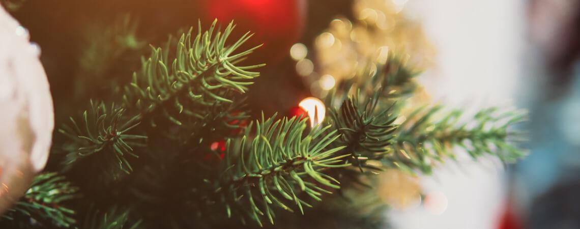 Nahaufnahme eines Weihnachtsbaums