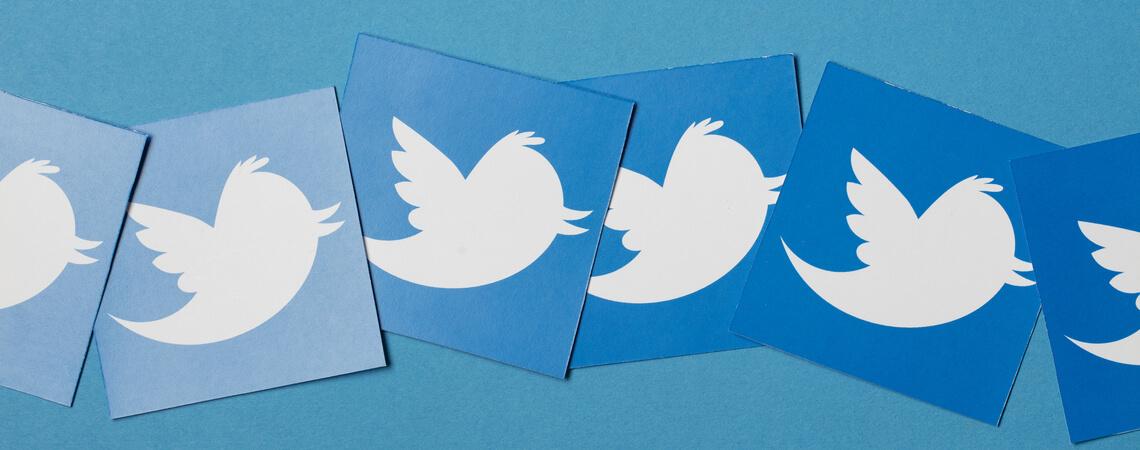 Twittervögel
