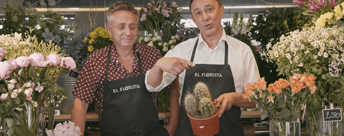 Floristen zeigen auf Kaktus
