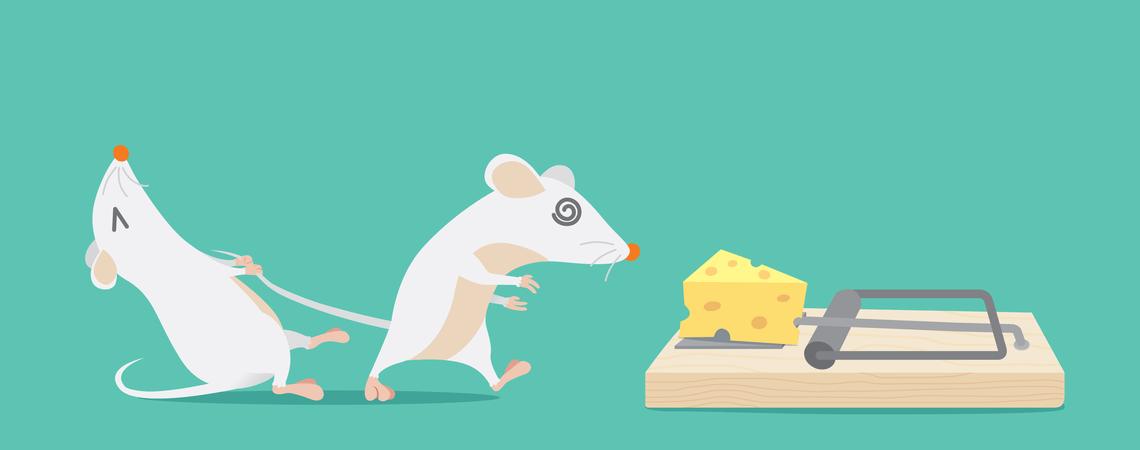 Maus versucht die andere Maus davon abzuhalten, in eine Falle zu tappen.