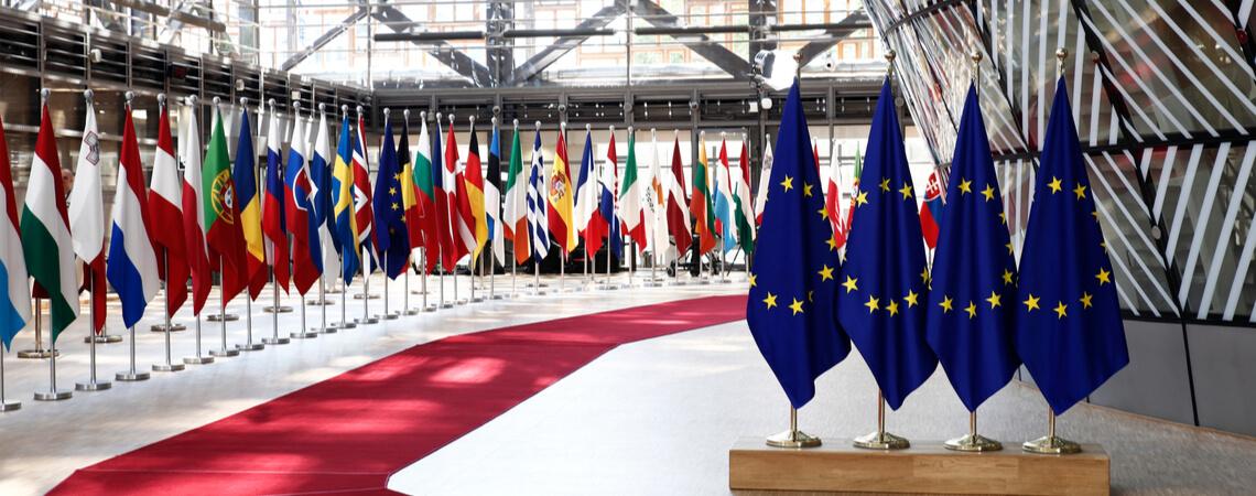 Flaggen der EU und der Mitgliedstaaten