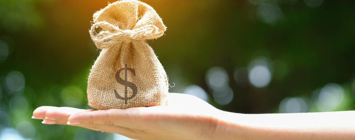 Hand mit Geldbeutel und Dollarzeichen