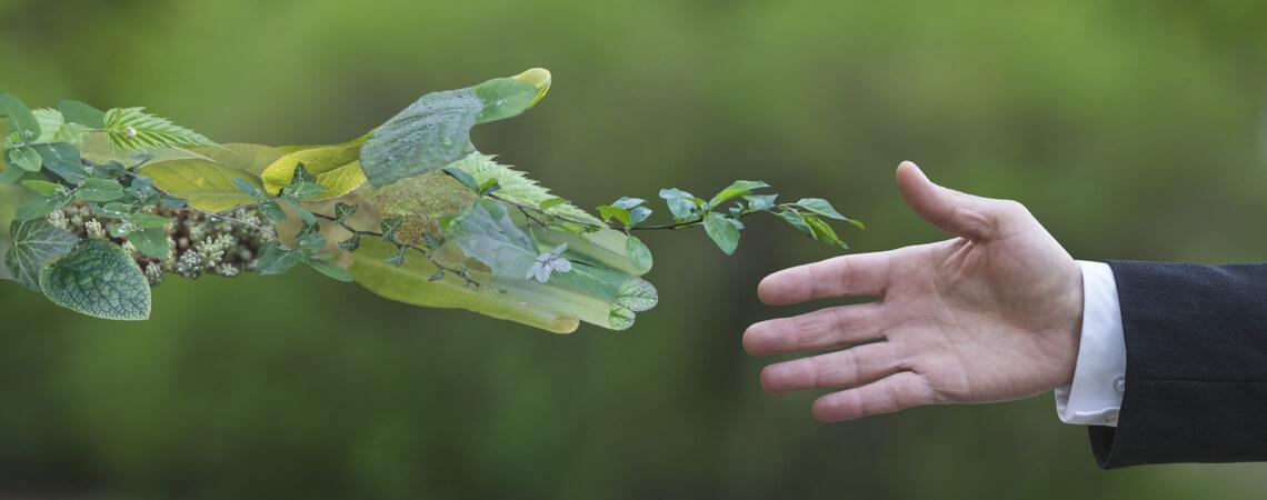Grüne Allianz: Hand eines Geschäftsmannes, der eine grüne Hand greift