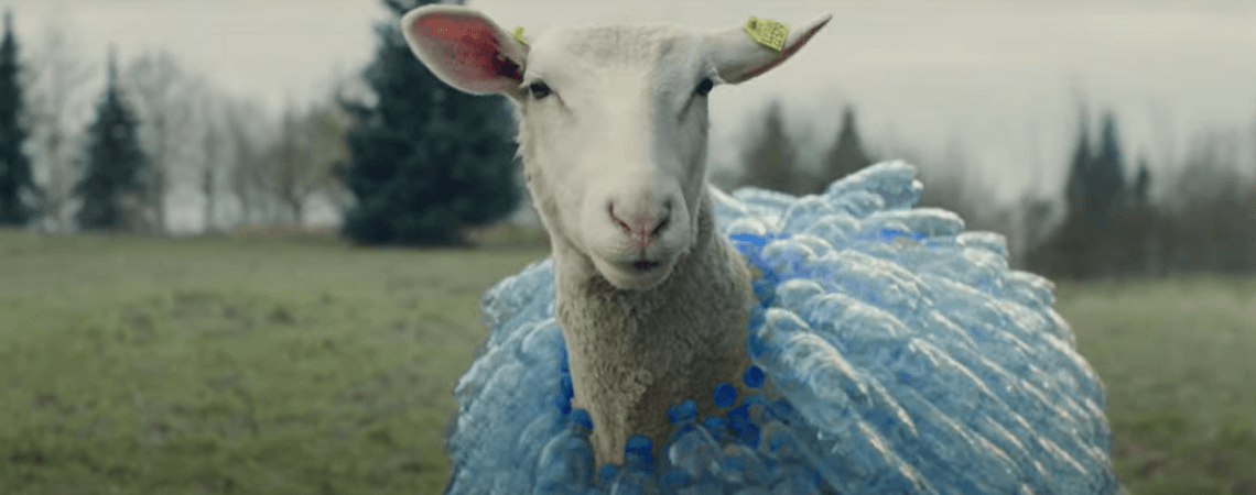 Schaf mit Plastik-Wolle