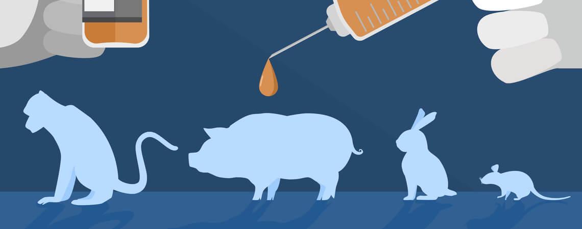 Mittel, die an Tieren getestet werden